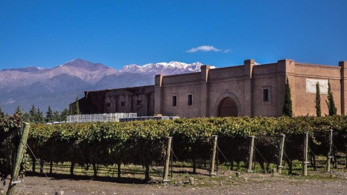 Andeluna winery