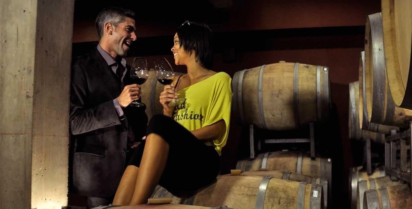 Mendoza wine tours private tasting