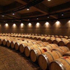Wine tour - Lujan de Cuyo