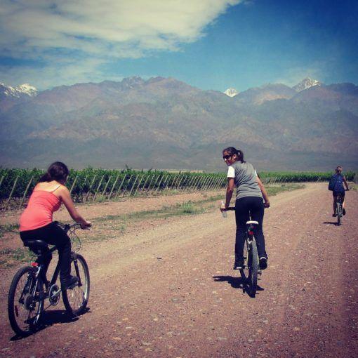 wine bike tour
