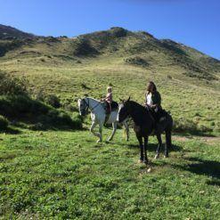 best of Mendoza