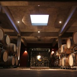 Boutique Winery
