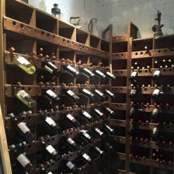 best mendoza wine tours