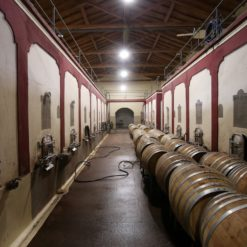 19th Century colonial style wineries