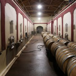 best mendoza wine tours