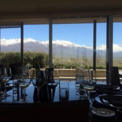 Excursión de vino en Valle de Uco