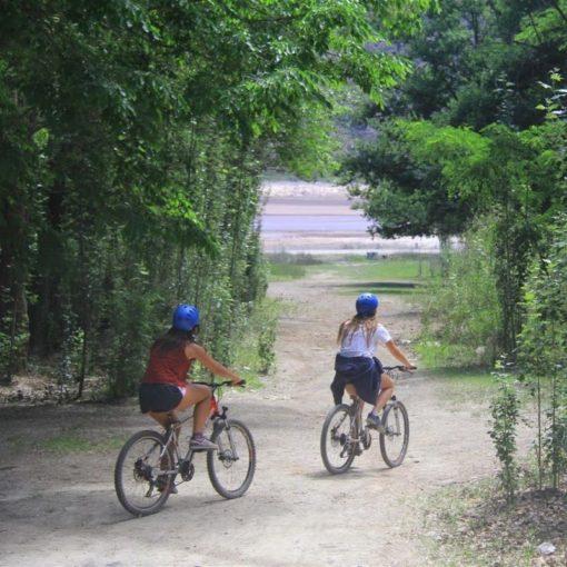 Excursión de vino en bicicleta