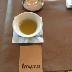 Degustación de aceites de oliva.