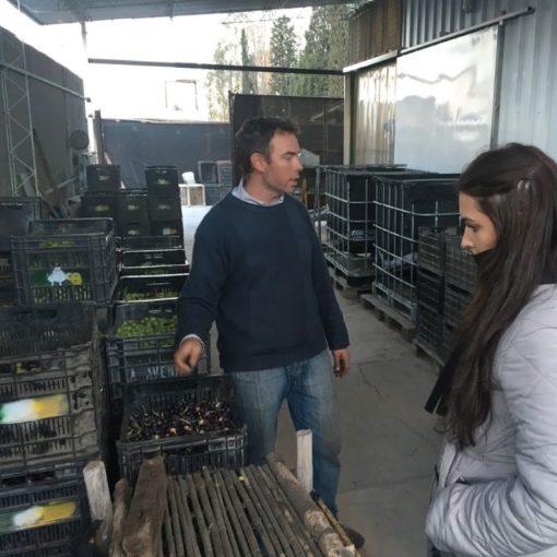 Fábrica de aceite de oliva