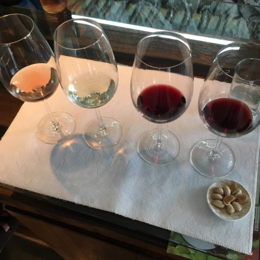 argentina wine regions