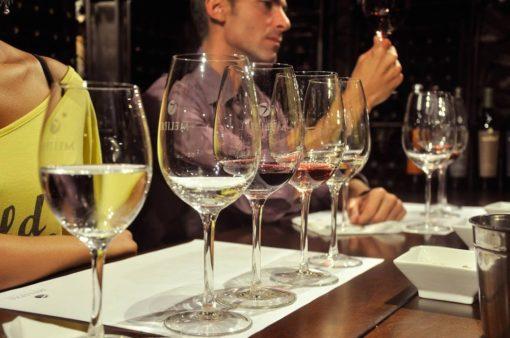 Winemaker and wine tasting