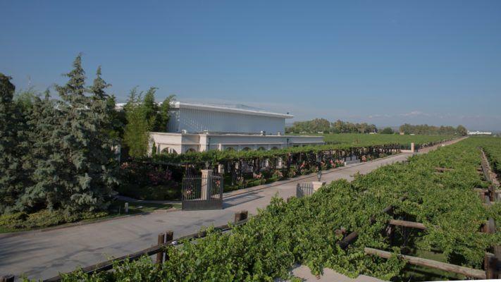 Finca Agostino winery